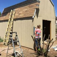 Wood shop shed ideas