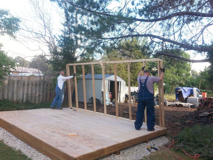 Use helpers when building and standing your shed walls up.