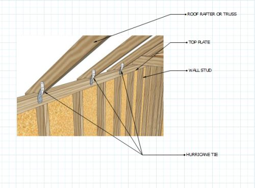 Use hurricane ties in shed roof framing